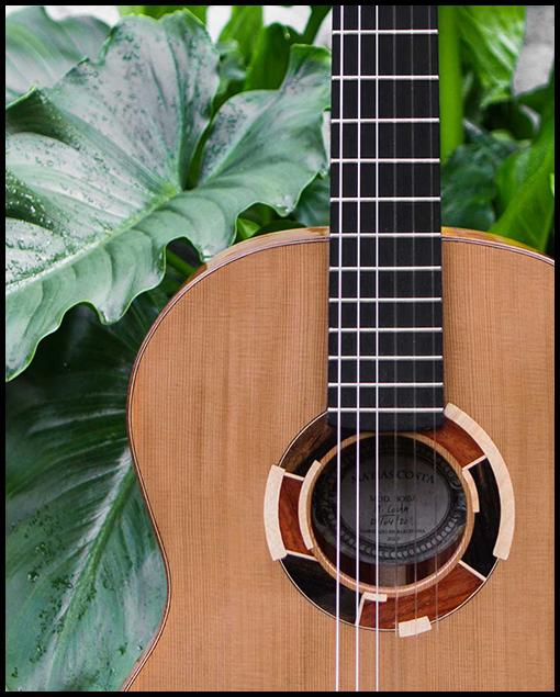 Frente guitarra artesanal clásica Bossa