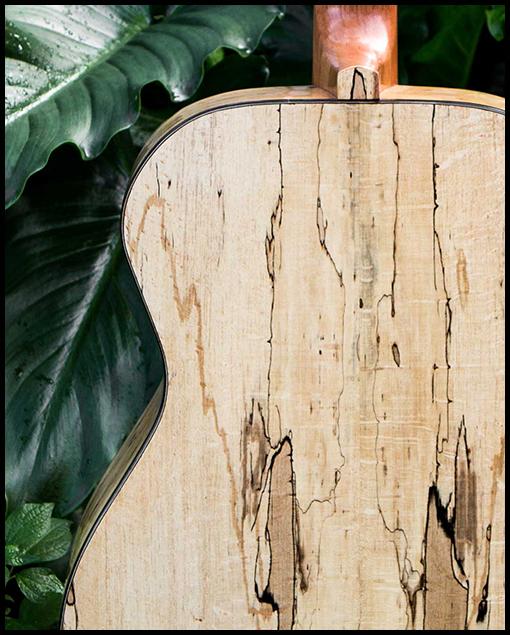 fondo Guitarra fabricada artesanalmente Matias Costa Luthier