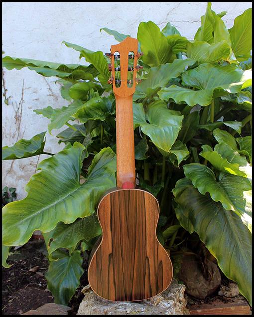Guitalele personalizado Matias Costa luthier fondo