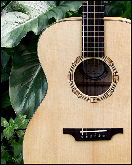 Guitarra artesanal acústica Frida tapa