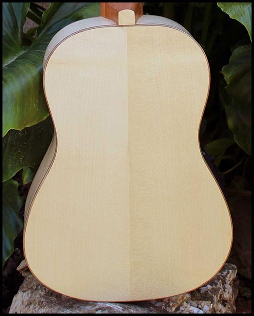 Guitarra de viaje Matías Costa Luthier fondo