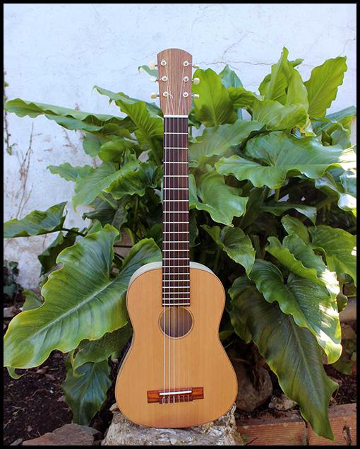 Guitarra de viaje modelo estándar Nahuel Matías Costa Luthier