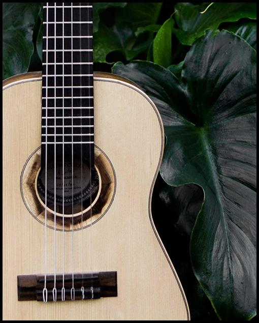 Frontal guitarra viaje artesanal personalizada