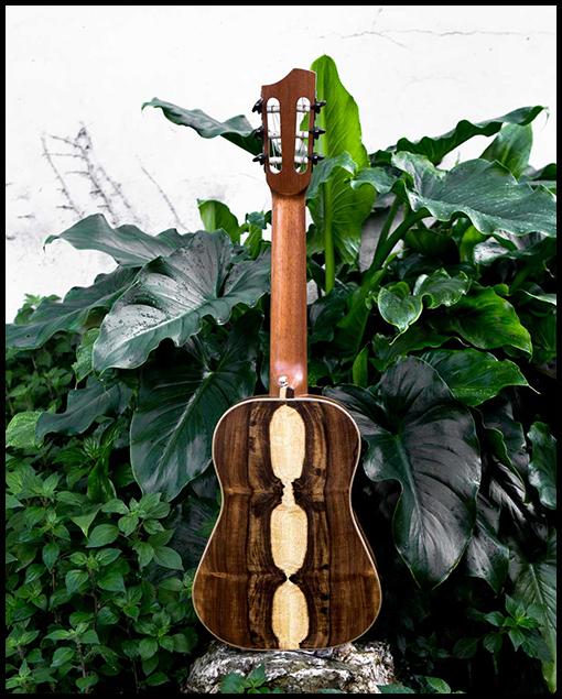 Guitarra de viaje personalizada de Matías Costa Luthier vista trasera
