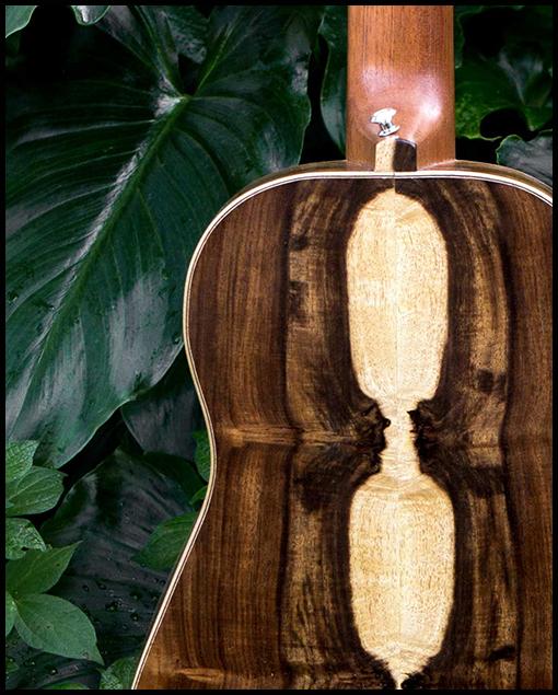 Fondo guitarra de viaje personalizada