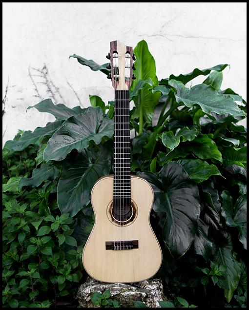 Guitarra de viaje personalizada de Matías Costa Luthier